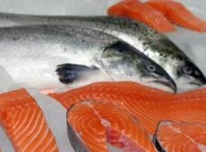 Морепродукты из Норвегии могут оказаться «персонами нон грата»